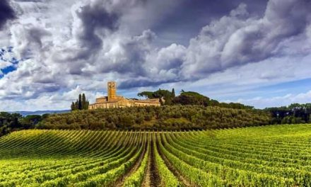 Free 3-Day Immersion Course in Italian Wine